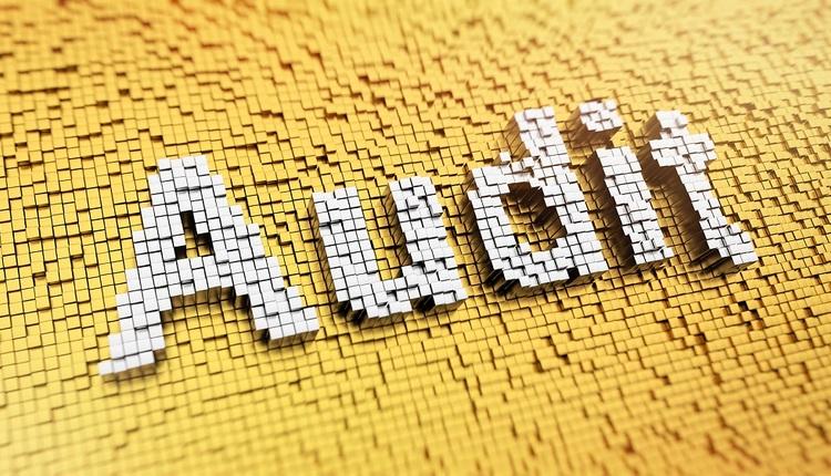 audit 101
